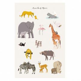 Affiche - Animals of Africa